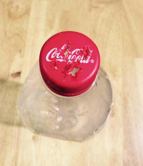 Cách làm giá đỗ bằng chai nước