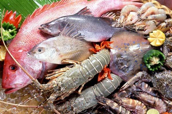 cách bảo quản hải sản tươi ngon